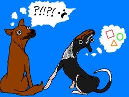 broshdogs