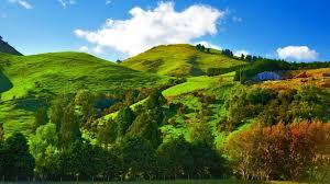 Middle Earth Landscape